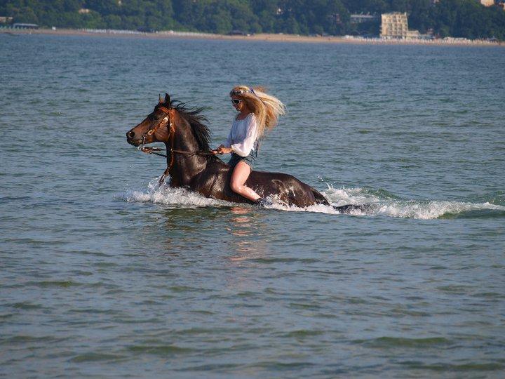 На Море с коне