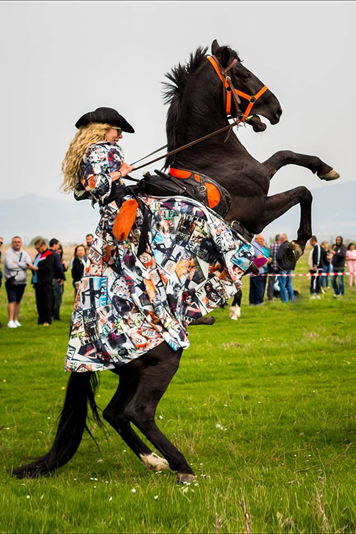 Performance with horses