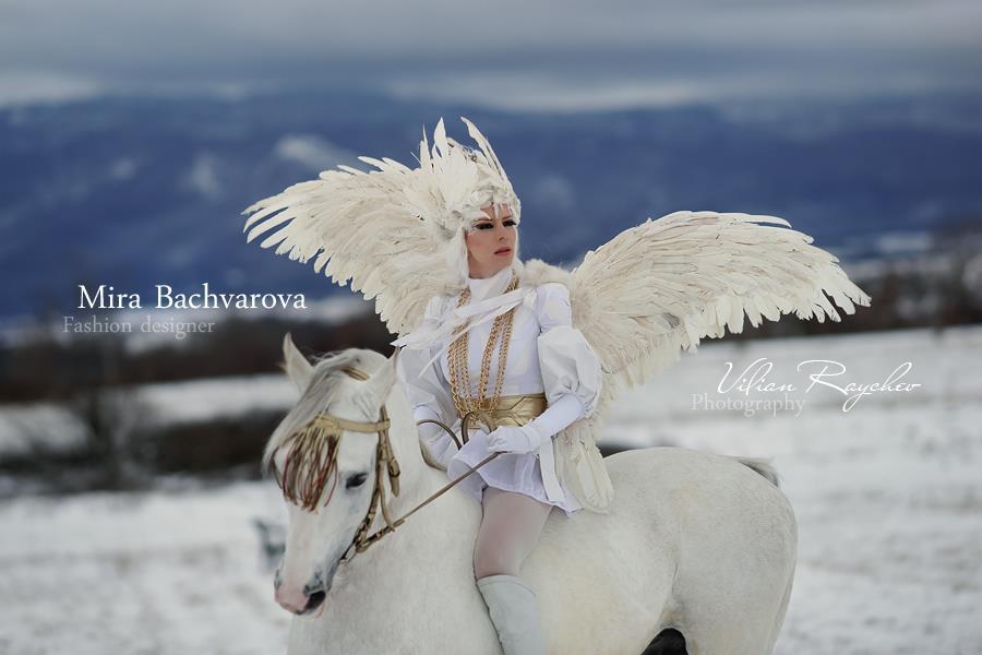 The warrior angel